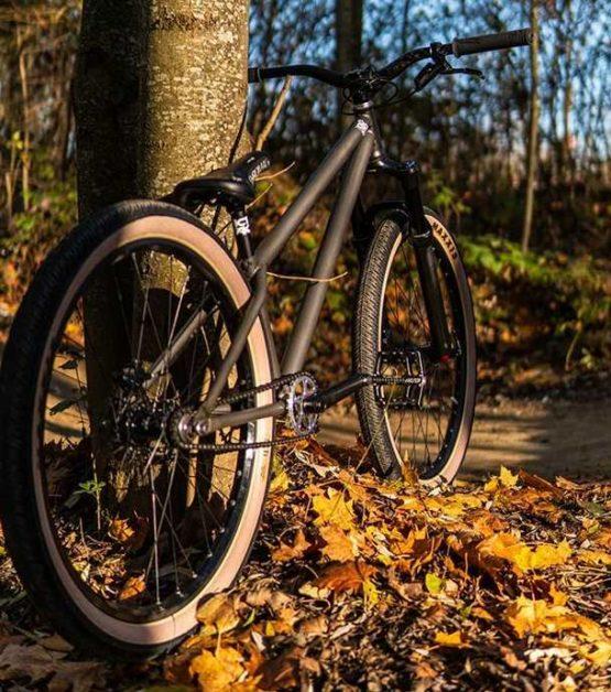 Dirtbike Kaufen Leafcycles Ruler Pro Turbomatik 1